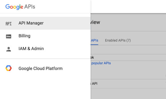 Google API manager