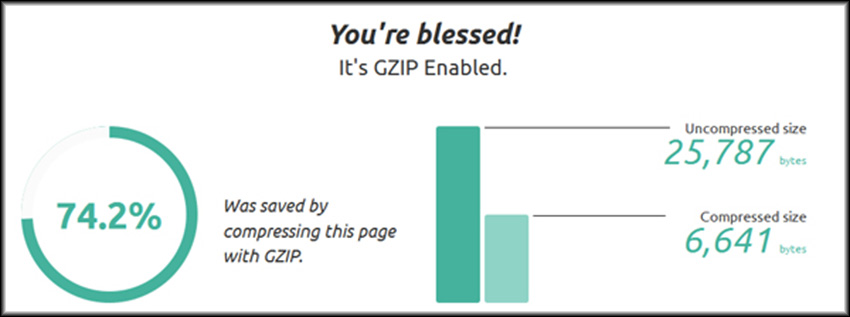 Gzip Ninja Speed Compression