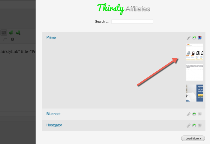 ThirstyAffiliate plugin review