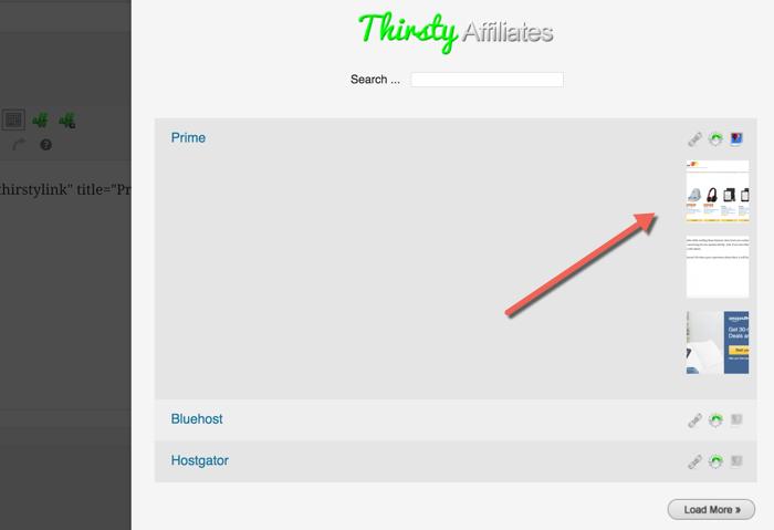 ThirstyAffiliate plugin review