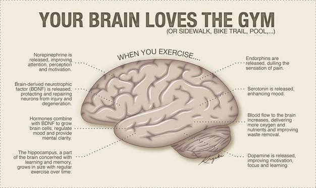 Excersie benefits on Mind