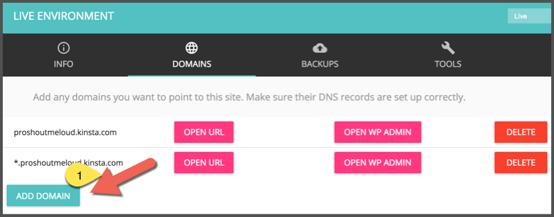 Add domain to Kinsta WordPress Hosting