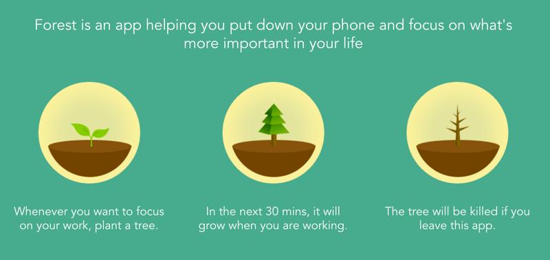 Forestapp productivity