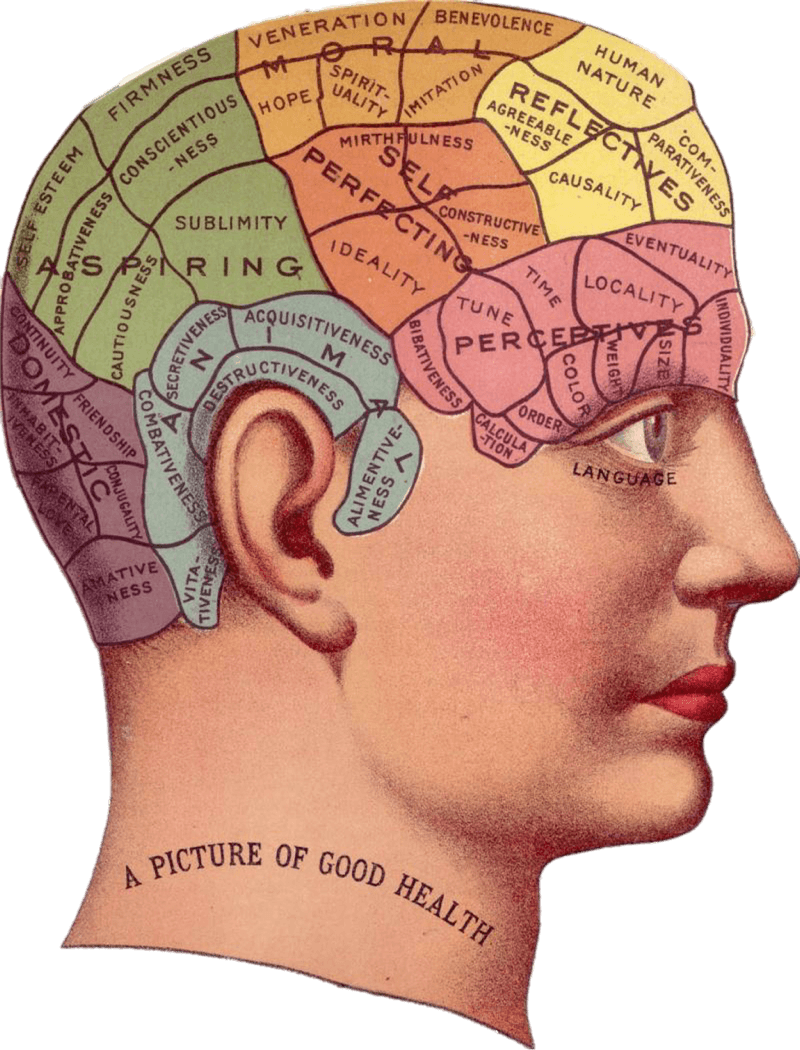 improve mental focus