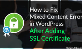 How to Fix Mixed Content Error in WordPress After Adding SSL Certificate
