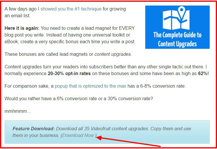 Lead Magnets 11 Ways to Get More Subscribers VideofruitLead Magnet 11 Ways To Turn Readers Into Subscribers
