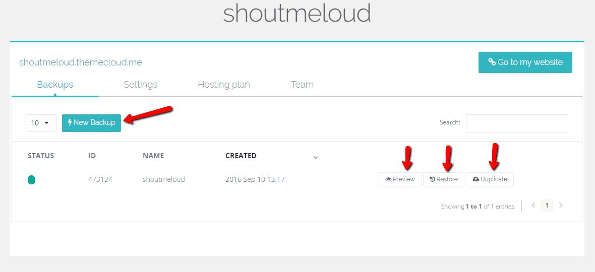 Themecloud manually create a backup