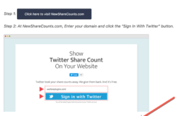 How to Show Twitter Share Count Even After It's officially Gone