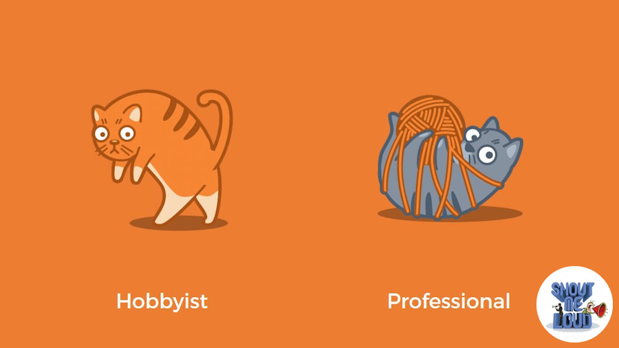 The hobbyists and the professionals