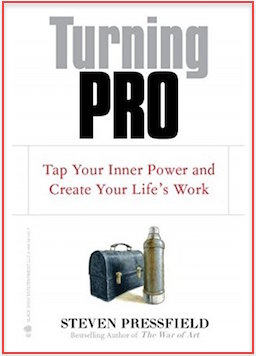 Turning Pro - Tap Your Inner Power and Create Your Life's Work