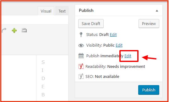 WordPress Publish immediately
