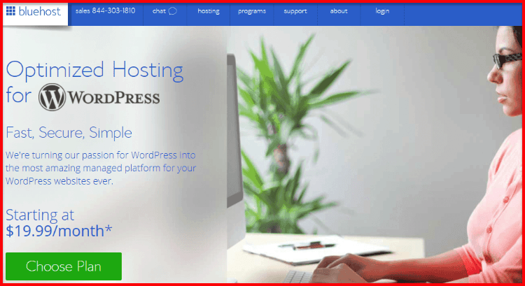 Bluehost Optimized WordPress Hosting