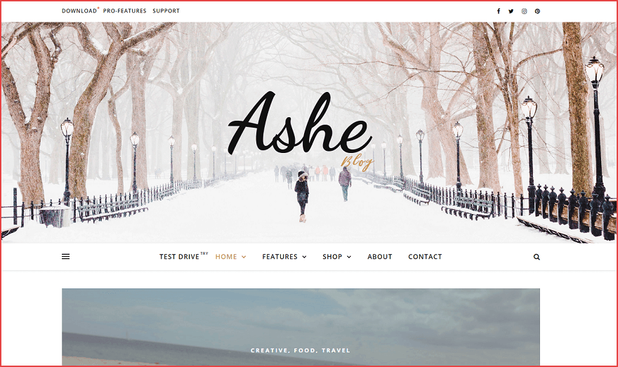 free beauty blog theme