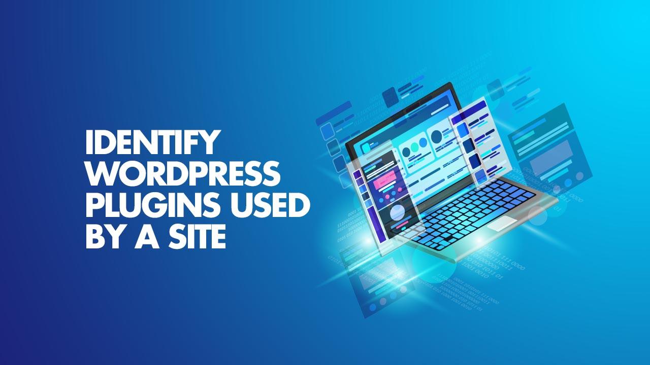Find WordPress Plugin on Website