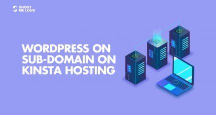 Installing WordPress on Sub-Domain with Kinsta Hosting: Tutorial